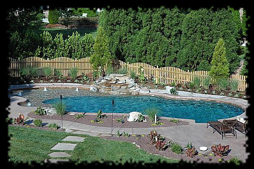 Swimming pool designs in raleigh 10 years experience for Pool landscaping